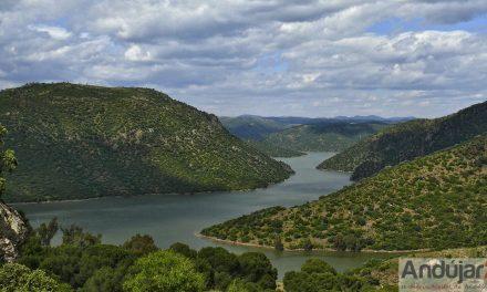 Prohibido el uso del fuego en los espacios forestales y de influencia forestal de Andalucía