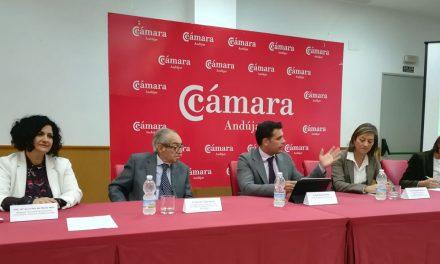 Presentan en Andújar ayudas para la modernización y expansión de comercios