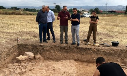 Un equipo de arqueólogos investiga las excavaciones arqueológicas en el yacimiento de Los Villares