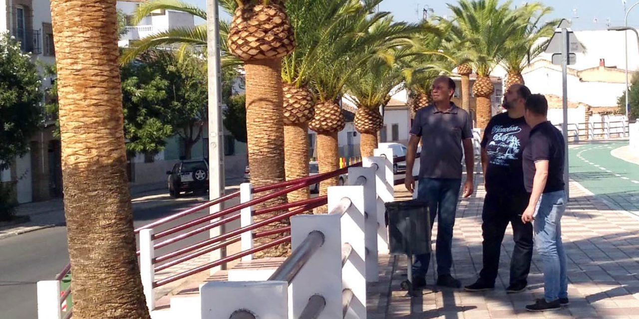 Andújar declara la guerra al 'picudo rojo'