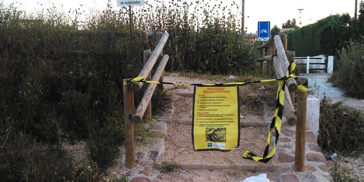 La Consejería de Agricultura interviene en la mejora de la Puerta Verde de Andújar