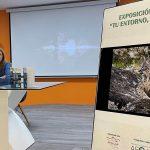 El área de Cultura impulsa en colaboración con AFOAN una muestra en los mupis y paneles informativos distribuidos por Andújar
